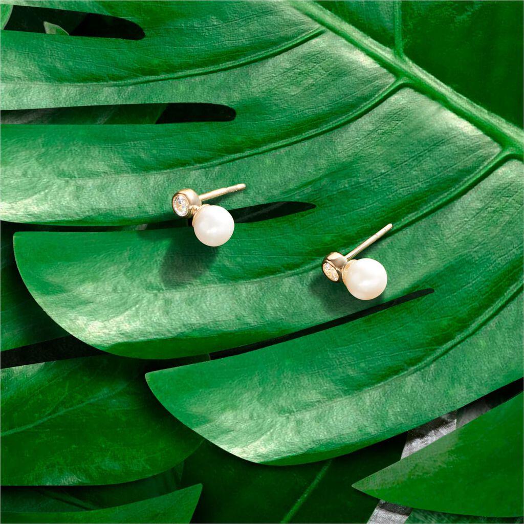 Damen Perlenohrringe Gold 375 Zuchtperle Zirkonia - Ohrringe Damen | Oro Vivo