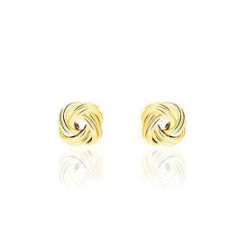 Damen Ohrstecker Gold 375 Knoten - Ohrstecker Damen | Oro Vivo