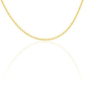 Damen Erbskette Gold 585 45cm  - Ketten ohne Anhänger Damen | Oro Vivo