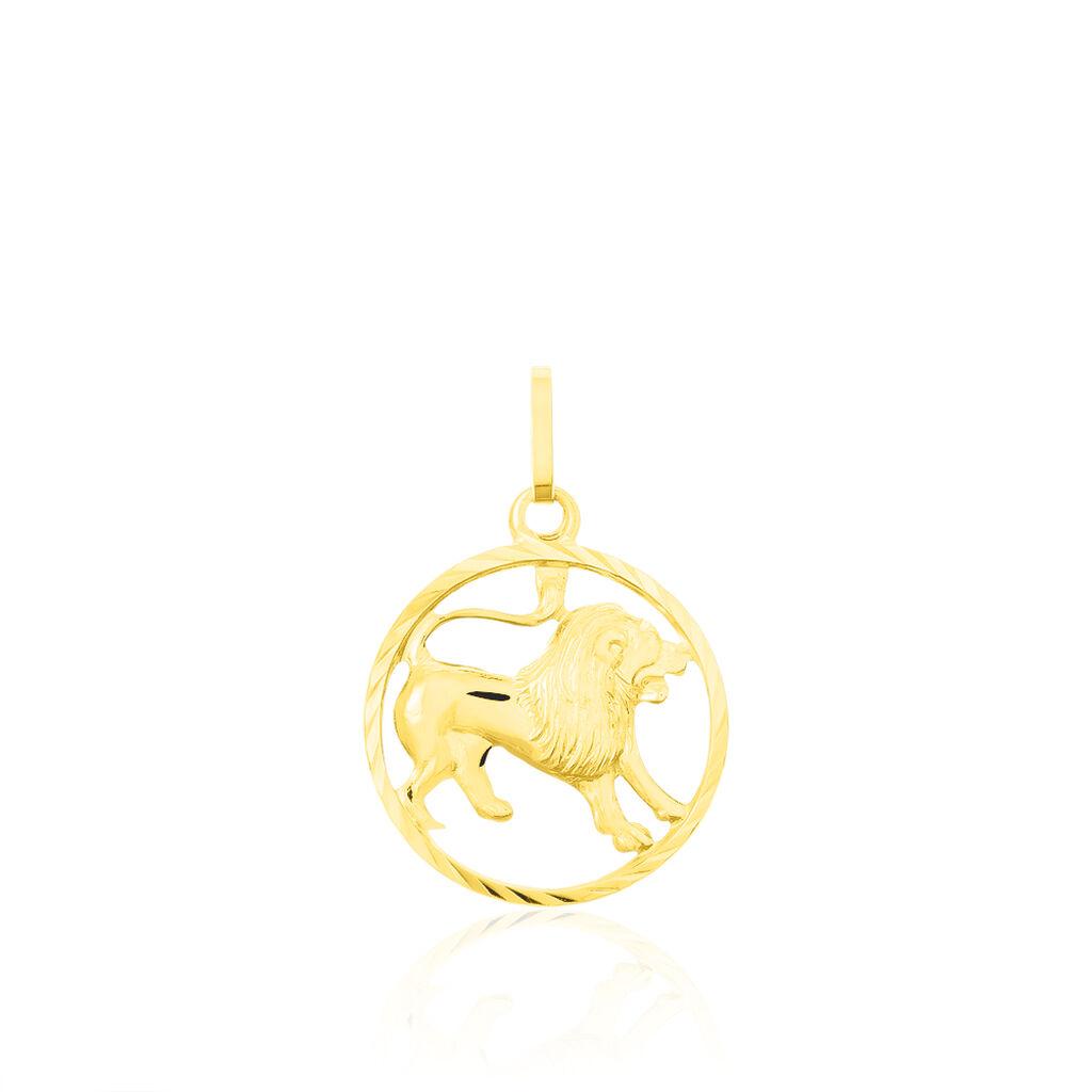Anhänger Sternzeichen Löwe durchbrochen Double vergoldet groß Horoskop