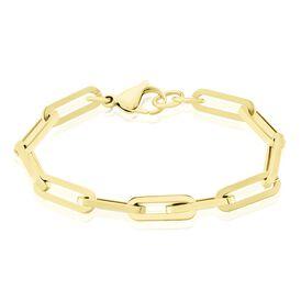 Damen Armkette Edelstahl Ankerkette Vergoldet - Armketten Damen   Oro Vivo