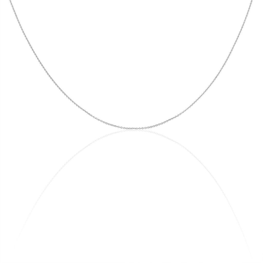 Damen Ankerkette Weißgold 585 45cm - Ketten ohne Anhänger Damen | Oro Vivo