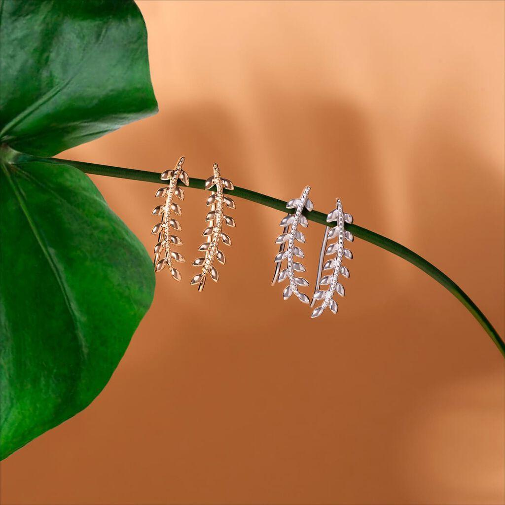 Damen Ohrklemme Silber 925 Rhodiniert Blatt - Ohrringe Damen   Oro Vivo