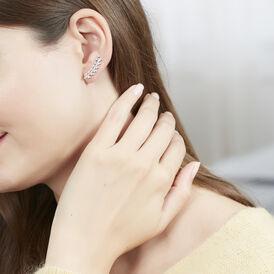 Damen Ohrklemme Silber 925 Rhodiniert Blatt - Ohrringe  | Oro Vivo
