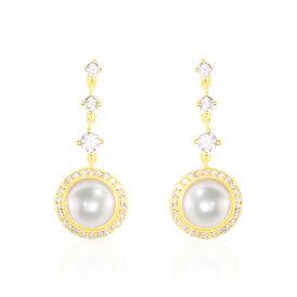 Damen Ohrstecker Lang Gold 585 Zirkonia - Ohrringe Damen | Oro Vivo