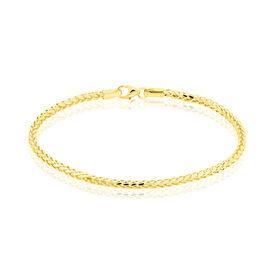 Damenarmband Fuchsschwanzkette Gold 585  -  Damen | Oro Vivo