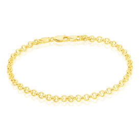 Damenarmband Erbskette Gold 585  - Armketten  | Oro Vivo