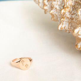 Damen Siegelring Silber 925 Rosé vergoldet Diamant - Ringe mit Edelsteinen Damen   Oro Vivo
