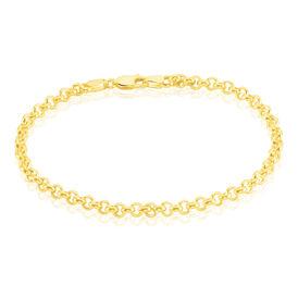 Damenarmband Erbskette Gold 585  -  Damen | Oro Vivo