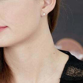 Damen Ohrstecker Weißgold 375 Diamant 0,14ct  - Schmuck    Oro Vivo