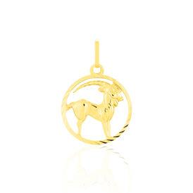 Unisex Anhänger Gold 333 Sternzeichen Steinbock - Personalisierte Geschenke Unisex   Oro Vivo